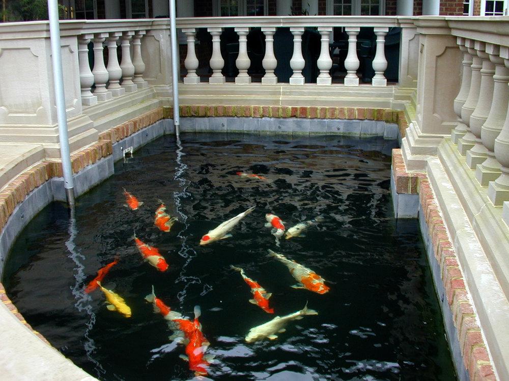 Pondworks_koi pond_01.JPG