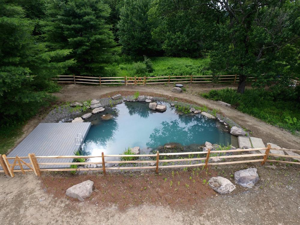 Pondworks_natural swimming pool_nsp_bionova.jpg