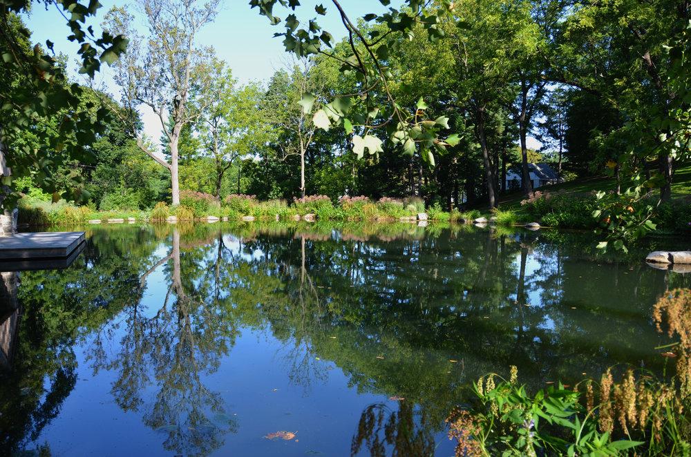 large pond_pondworks_design build.jpg