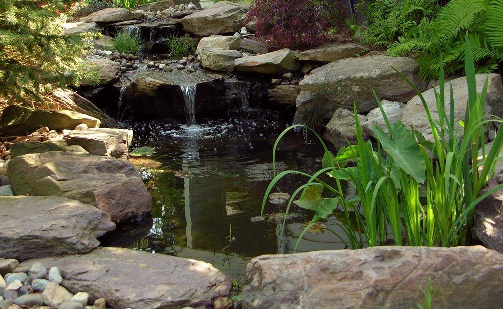 pondworks_waterfall_garden pond_design build_02.jpg