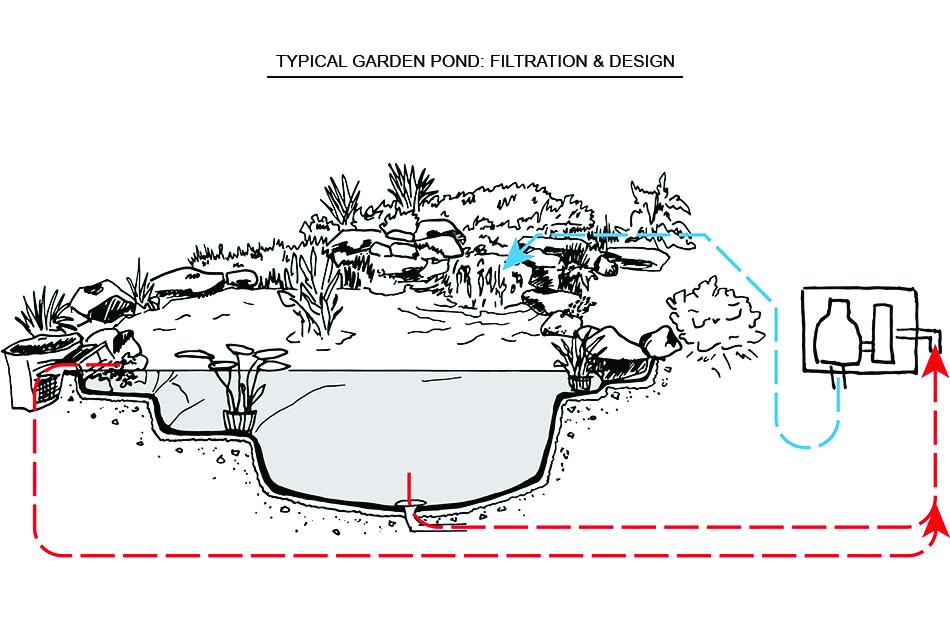 Pondworks_diagram_Garden Pond.jpg