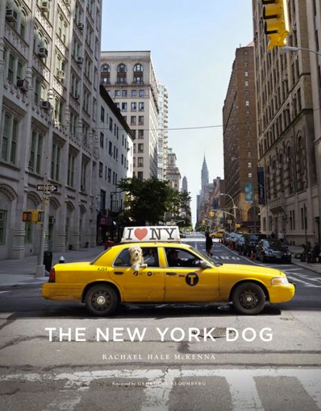 Book The New York Dog