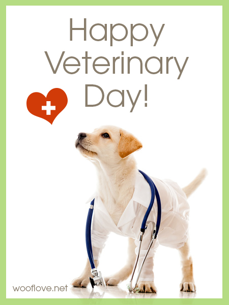 World Veterinary Day