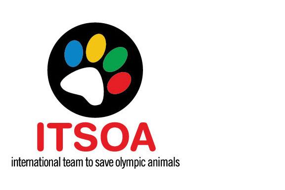 ITSOA Logo