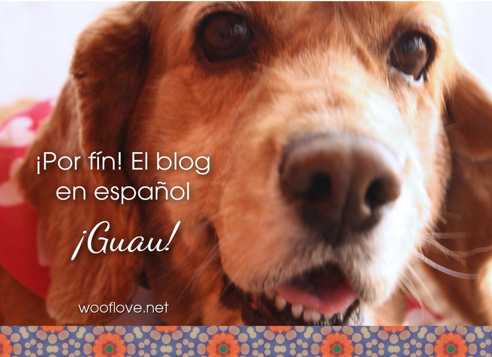 blog-en-espanol.jpg