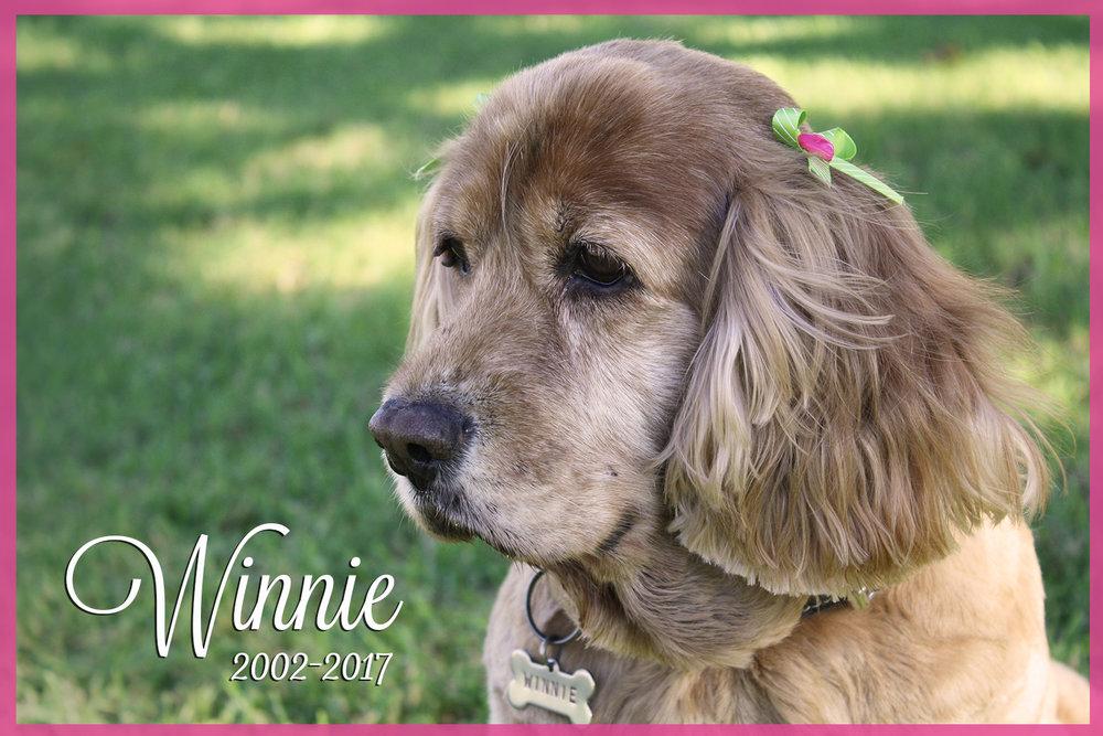 Winnie_2017.jpg