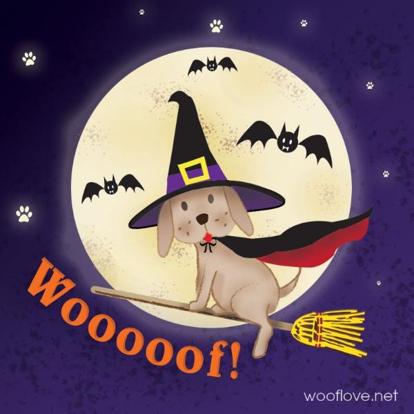 Dog-Halloween.jpg