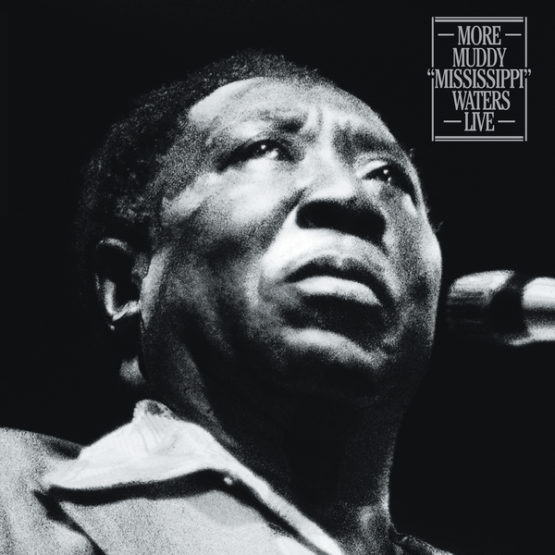 Muddy-waters-555x555.jpg