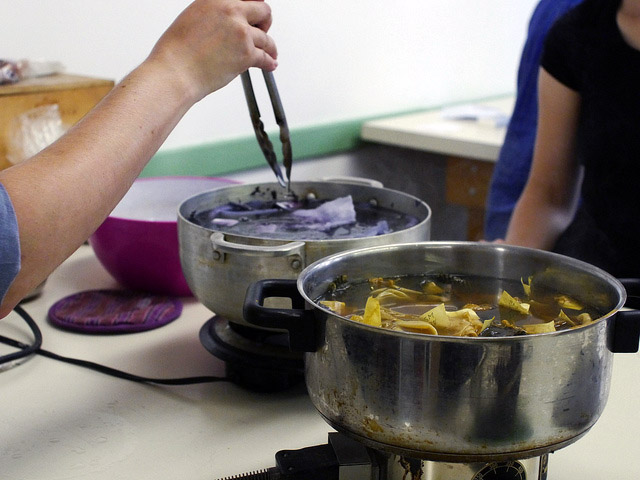 cba natural dyeing workshop