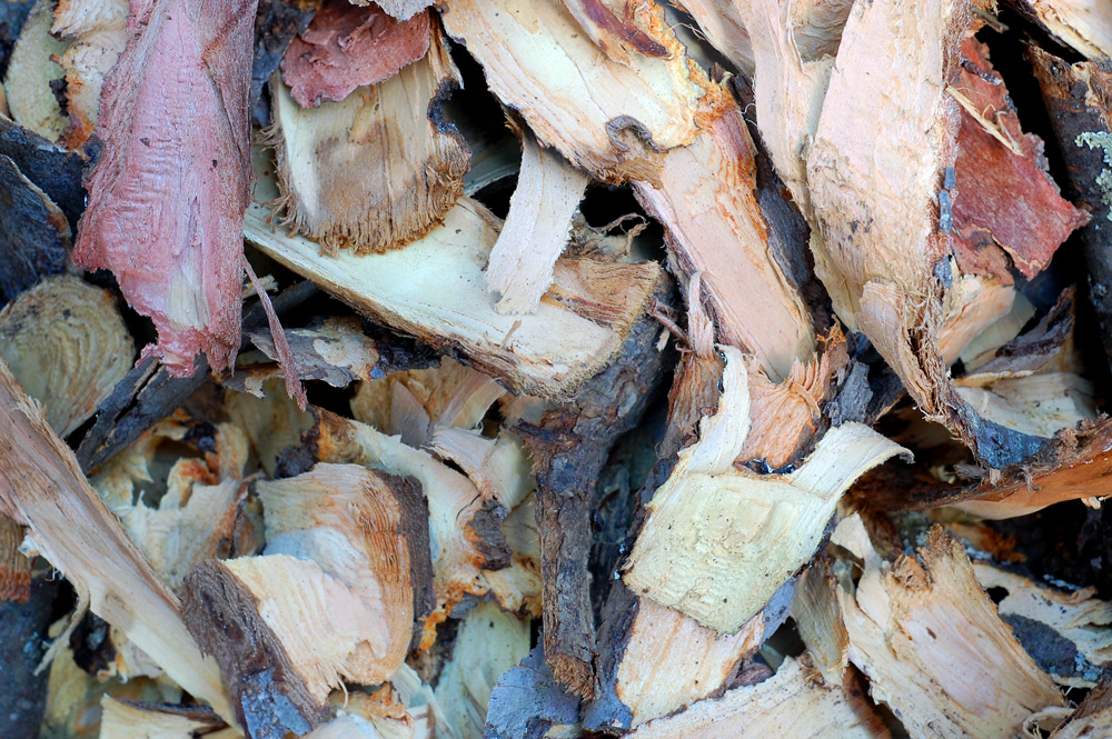 apple bark shavings