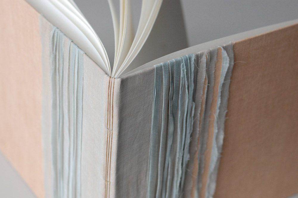 crinoline book