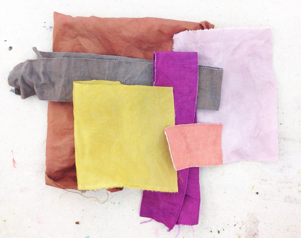 natural dyeing 101 intensive