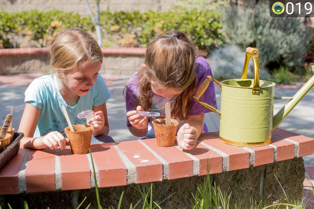 girls examining planted seeds