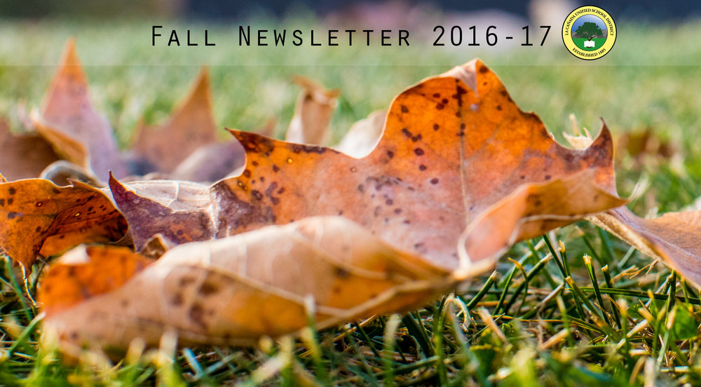 Fall newsletter logo with leaves.
