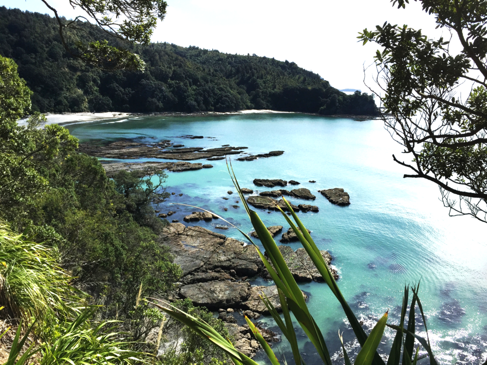 "Otarawairere Bay - 10 minute walk from New Zealand's ""most loved beach"", Ohope. Whakatane offers excellent beaches, bush walks, hunting, fishing and much more"