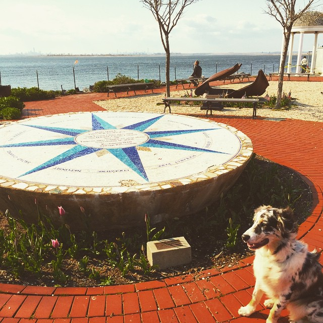 Finley at the 9/11 tribute park #rockaway #queens #queenscapes #heartofqueens #91101 via @lizzygilly23 (at 9/11 Tribute Park Rockaway Park, Ny)