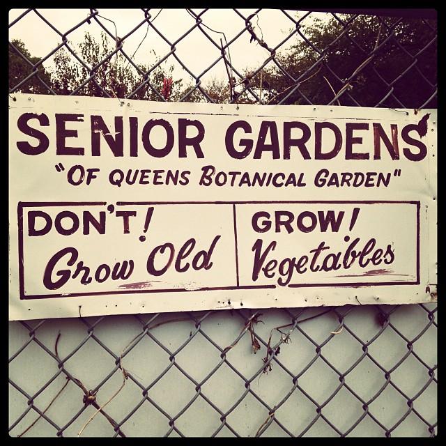 thephantomcatalyst: #signage #gardens (at Queens Botanical Garden)