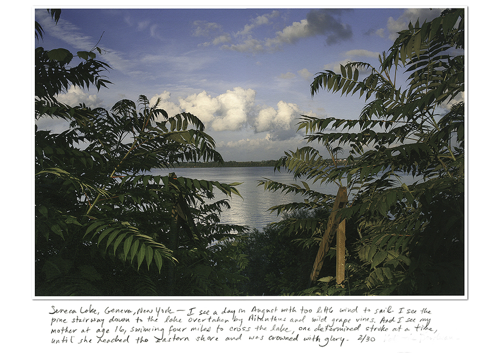 SenecaLake_Ailanthus_Lightened_name_removed_saturation_darken_text_heavily_incorrectly_retouched_72dpi_cropped.jpg