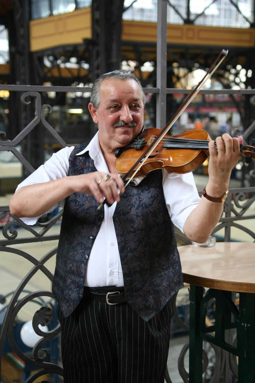 Hungarian Musician