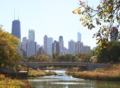 chicagoskylinezoo