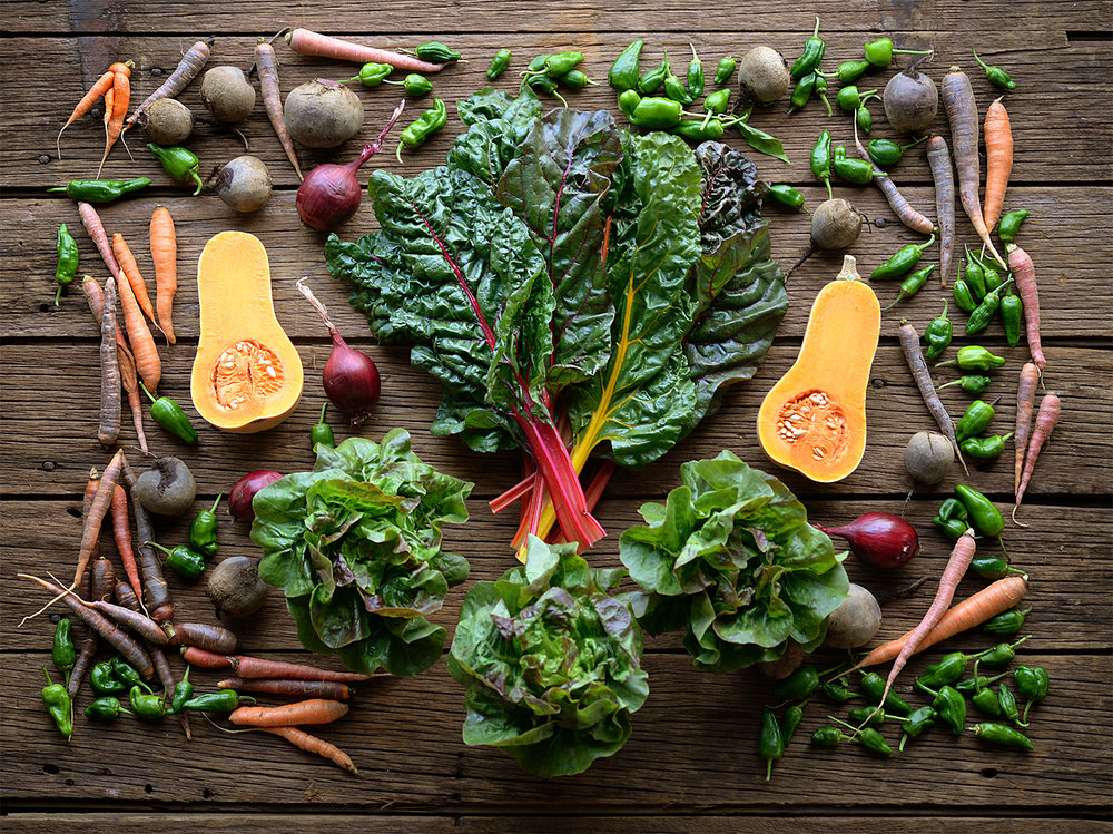 Example Fall Share:  1 Butternut Squash, 3 heads of Little Gem Lettuce, 1 bunch Carrots, 1 bunch Beets, 1 pound Onions, 1 pint Padron Frying Peppers, 1 bunch Rainbow Chard = $25