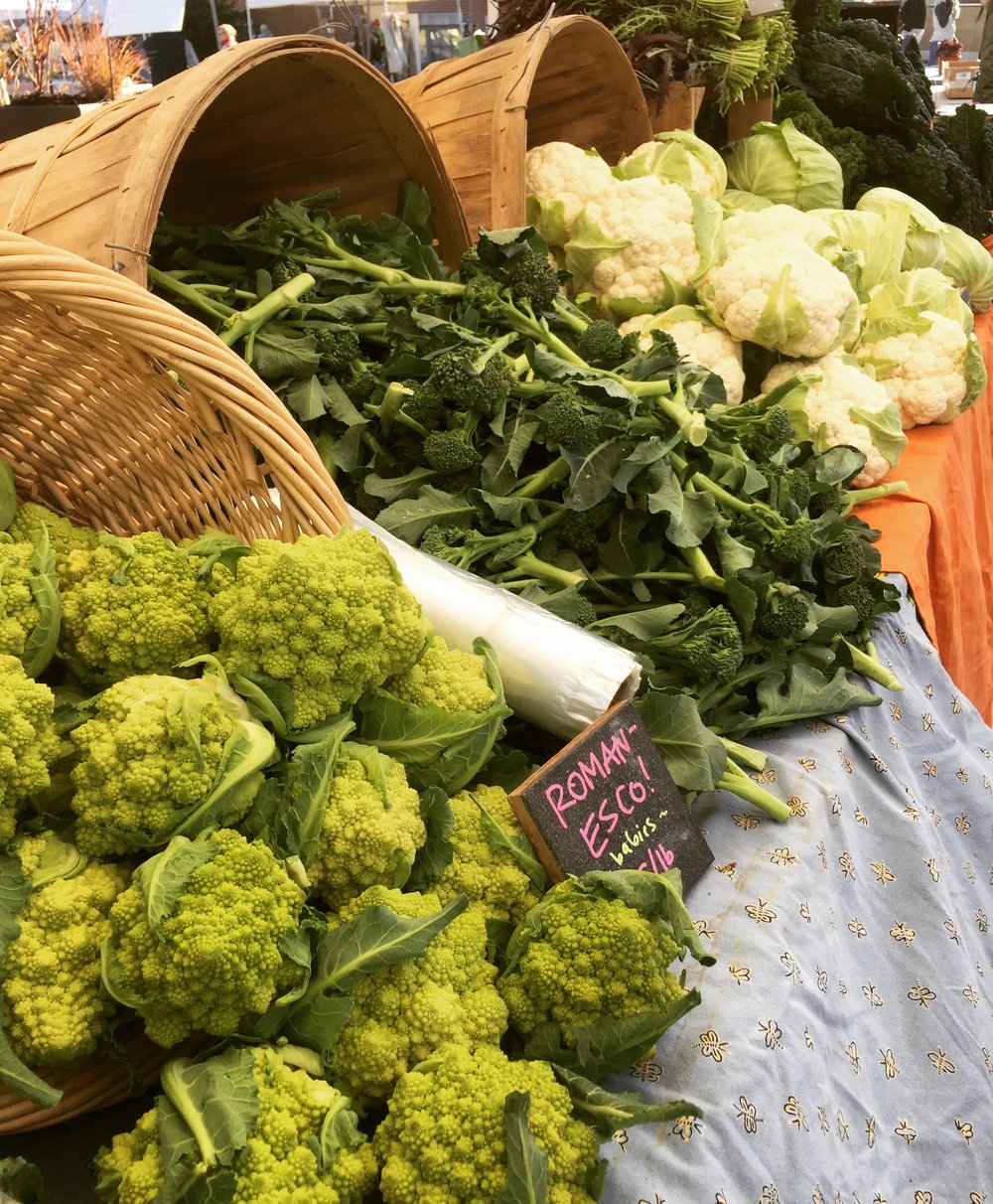 Fall Bounty at the Swarthmore Farmers' Market