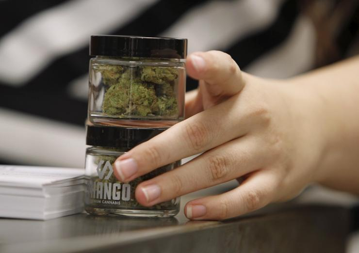 cannabis-shop.jpg