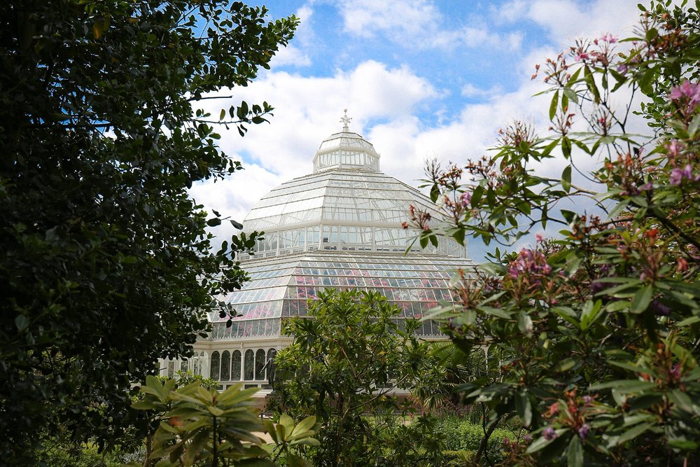 Sefton Palm House 1.jpg