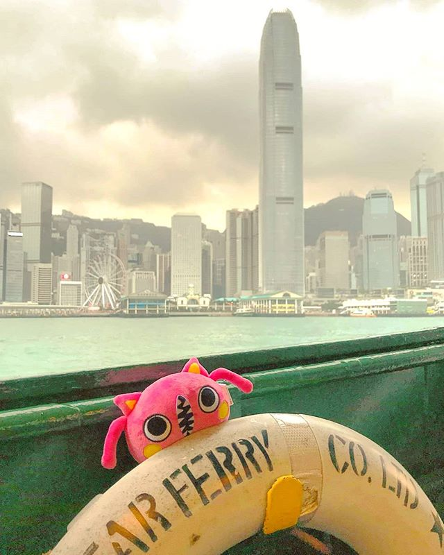 This #Bumboo found its way home! Thanks @mesmeri for taking care of this wild one #bamboostar #starferry #hongkong #adventuretime