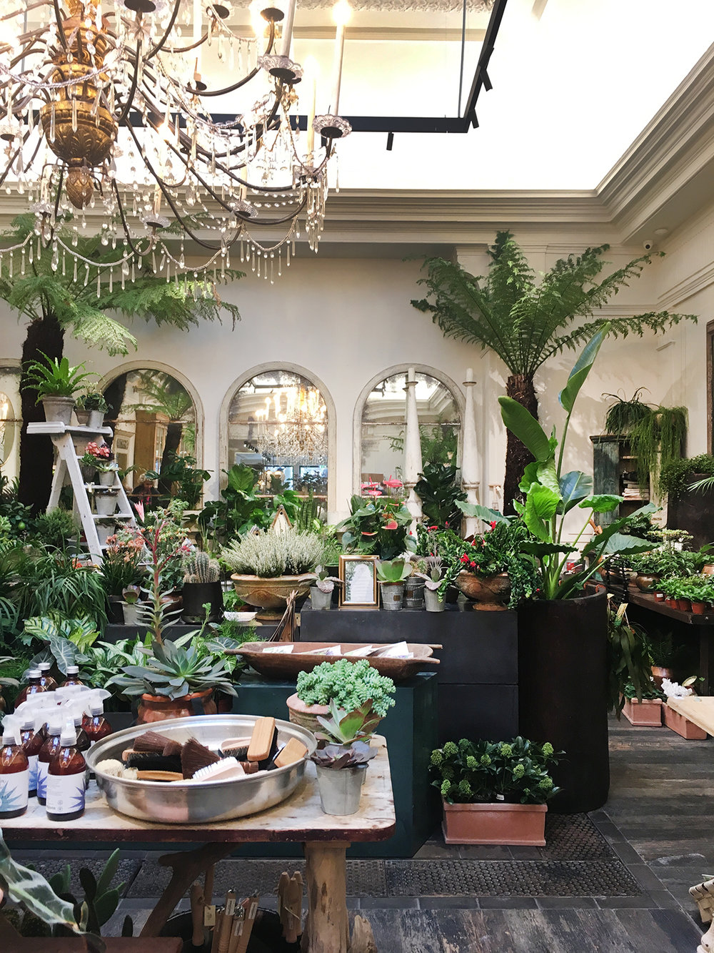 Petersham Nurseries, Covent Garden