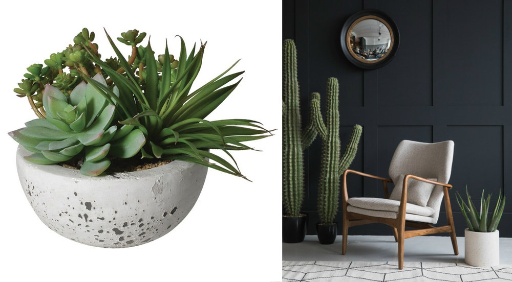 Faux succulent bowl , £24, Sweetpea and Willow;  Mid century armchair , Rose & Grey, £750