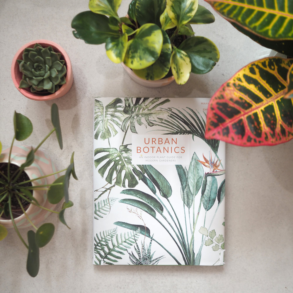 Urban Botanics by Maaike Koster and Emma Sibley