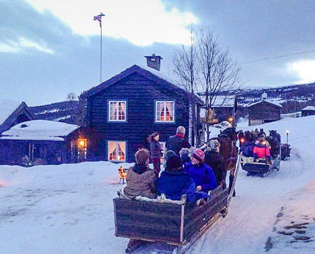Elevene fra Thomas Tallis på eksotisk kanefart med vaffelstopp på Lykkja Fjellgard.