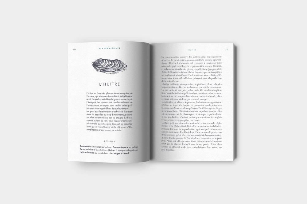La-pêche-à-pied-huitre.jpg