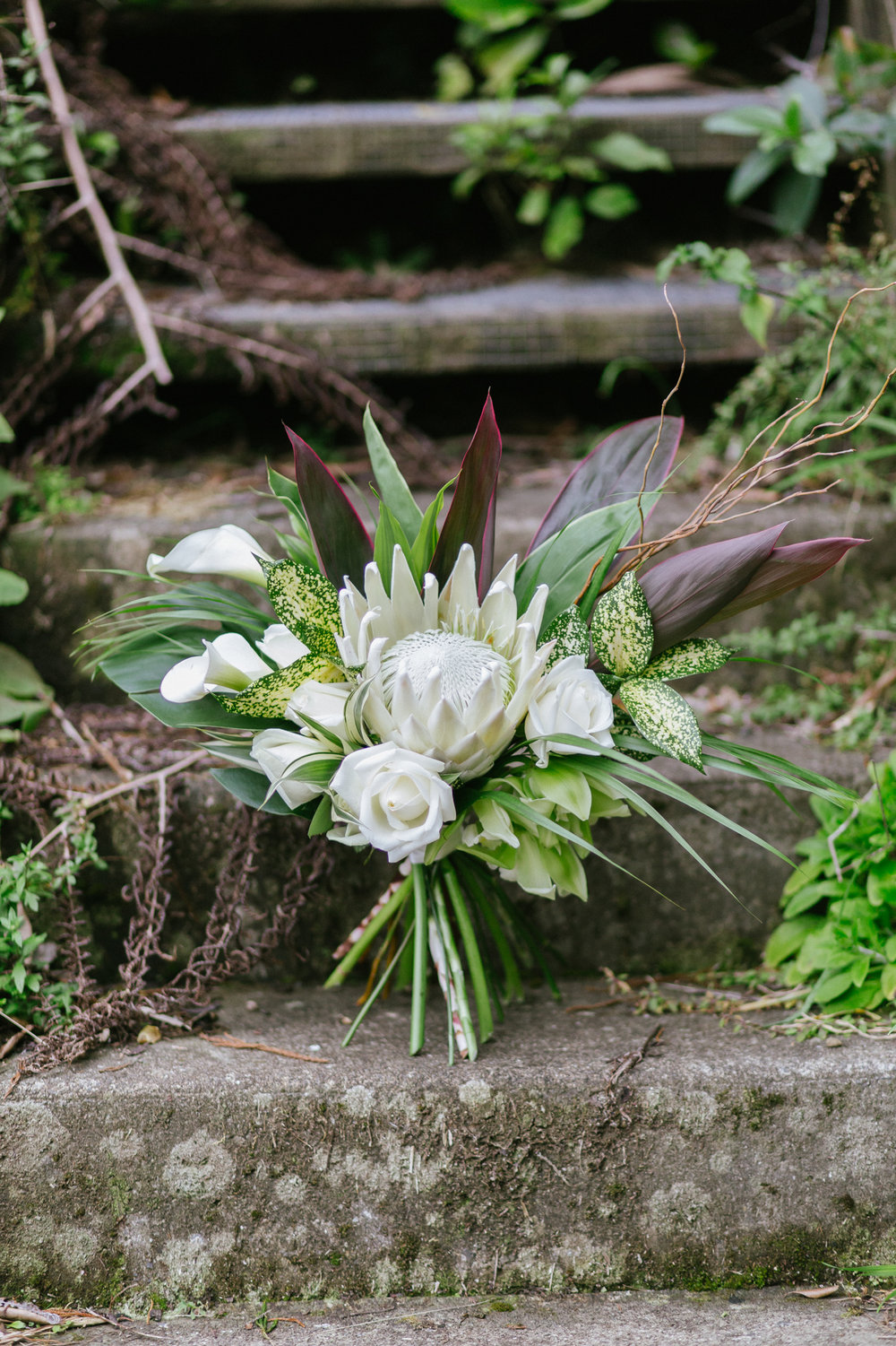 Tropical Wedding Protea Bouquet Romantic florist NZ Wedding Orchid Rose Willow Pink Pineapple Photo shoot Macrame Woodroyd Estate