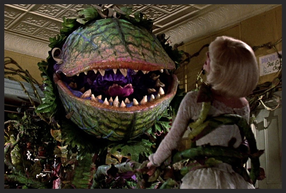 Speaking of insatiably hungry alien plant parasites, hell bent on taking over the world, this one does it in style! Audrey II is all about the presentation, singing and jiving on it's way to world domination! Only thing bigger than it's appetite, is it's attitude! Drop the weed killer, and RUN!