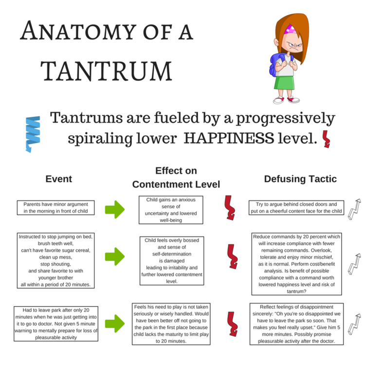 Anatomy of a Tantrum — Tribeca Play Therapy- NY, NY - Joseph Sacks, LCSW