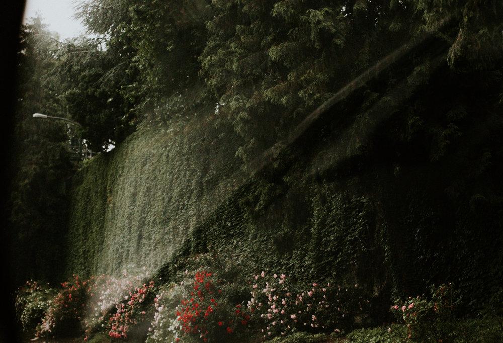 ReddenPhotography-2.jpg