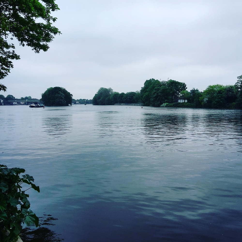 The Thames from Kew Bridge on my run on Friday