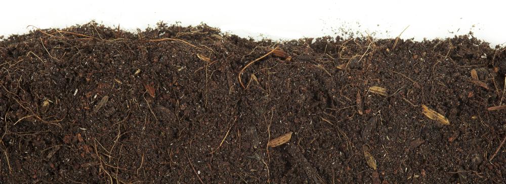 soil_footer.jpg