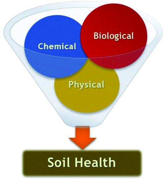 soilhealth_graphic_cgeorge2016