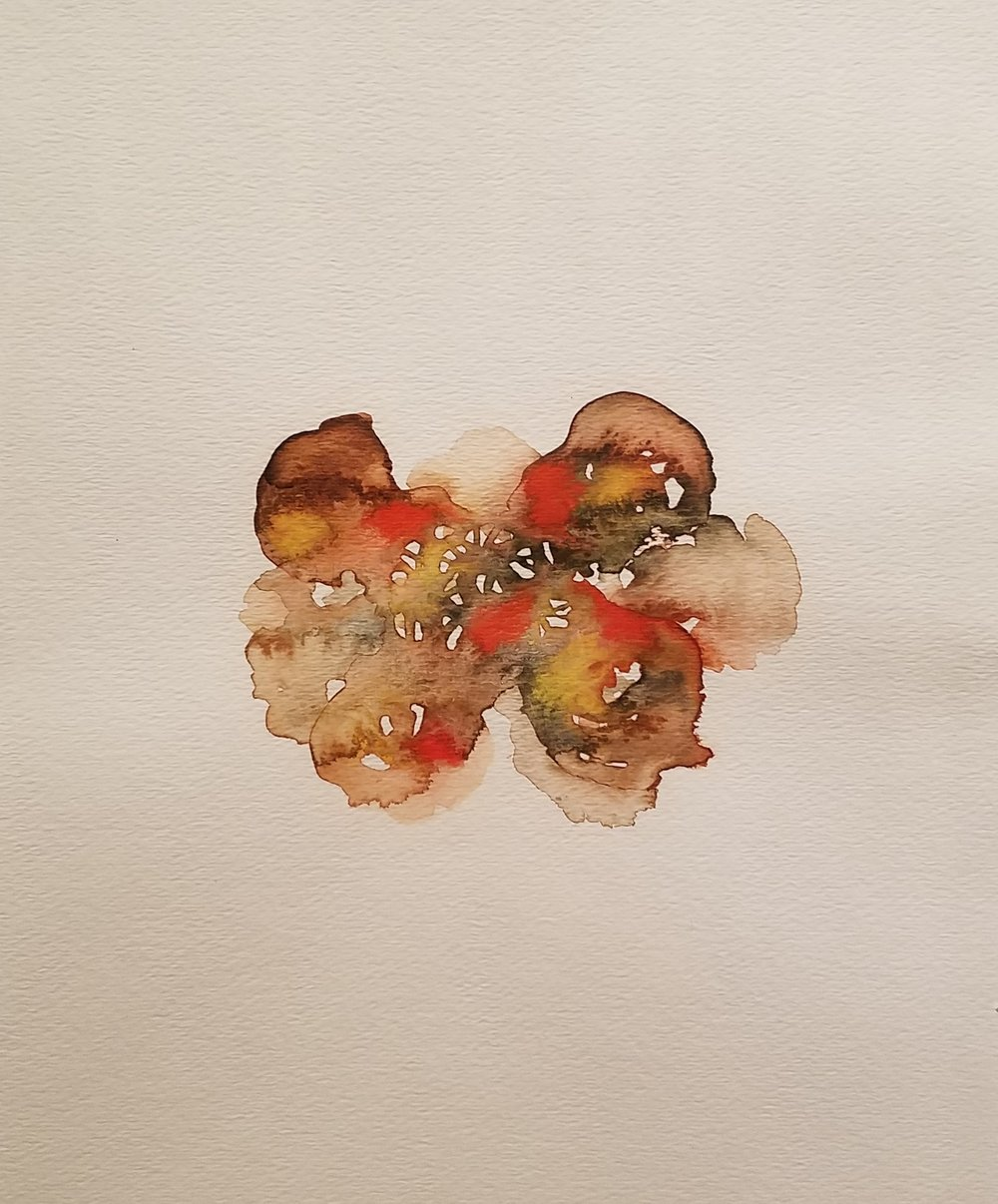 David Liss,  Untitled Watercolour #3 , 2014-2016, watercolour on paper, 24.75 x 21.75 inches,  (inquire)