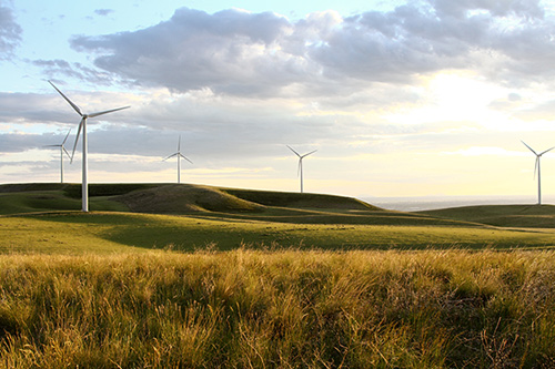 Beautiful field with large wind turbines with tall grass and grey clouds