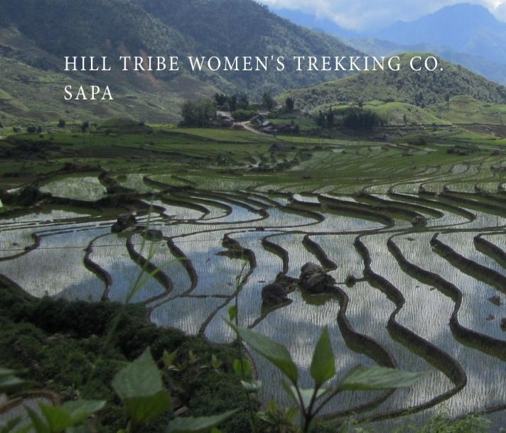 rice paddies that links to the HIll Tribe Women Sapa Vietnam trekking website