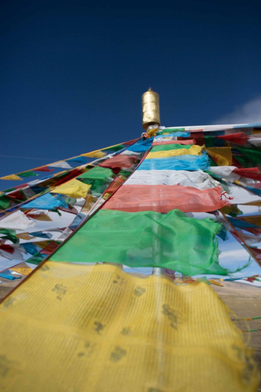tibetselect1-25437.jpg