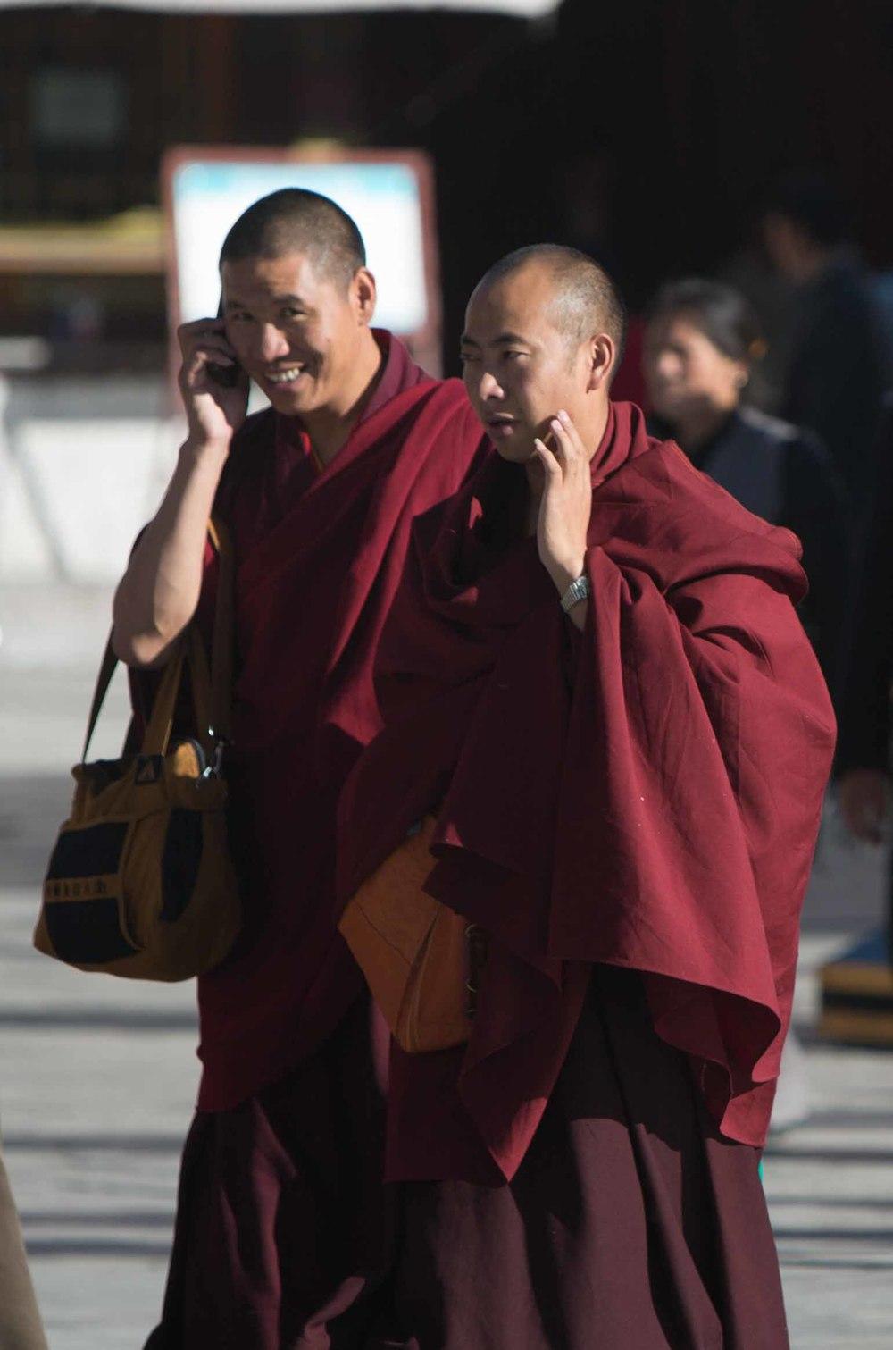 tibetselect1-25972.jpg