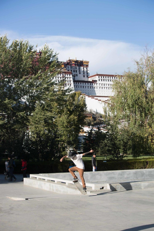 tibetselect1-26092.jpg