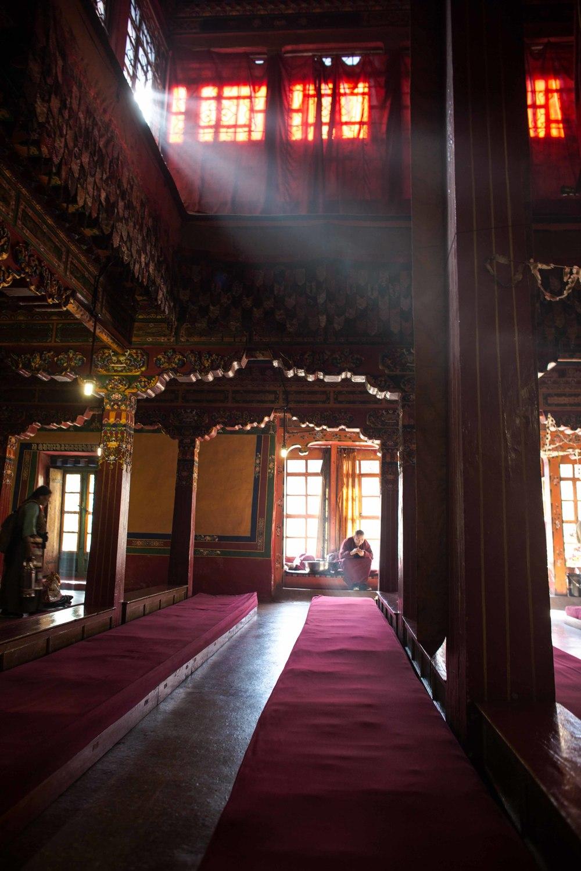 tibetselect1-26440.jpg