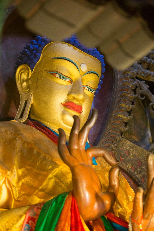 tibetselect1-27319.jpg