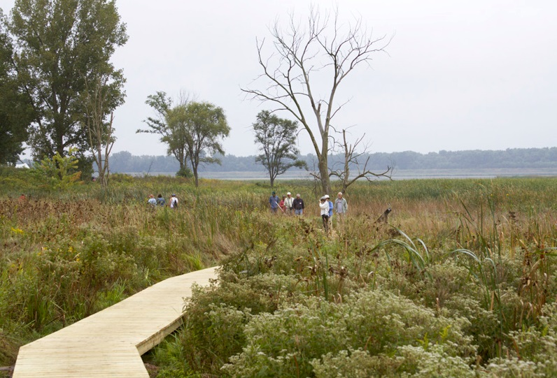 Guests at the refuge anniversary event September 10 explore the rich wetlands and prairie along the new boardwalk trail.